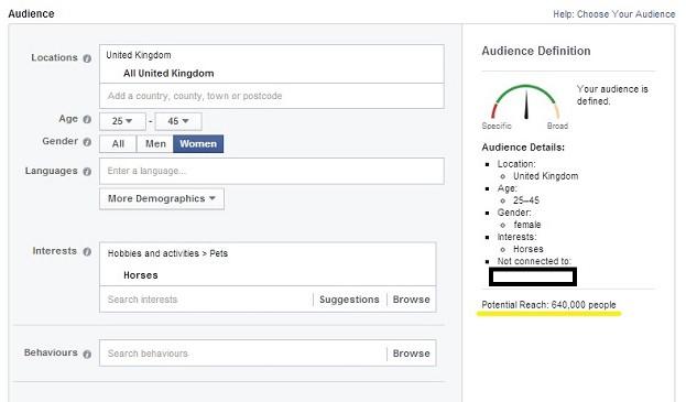 Facebook ads segmención personal